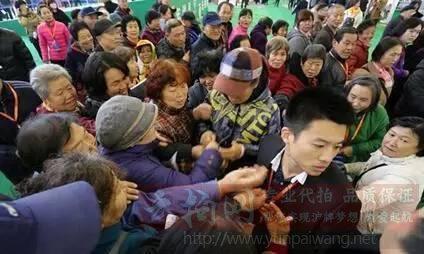 牛拍网土豪的世界你不懂,上海牌照拍卖逼近9万元创新高